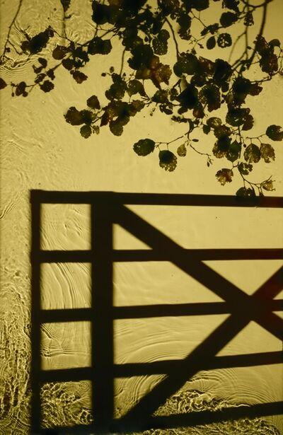 Susan Derges, 'Entrance', 2012