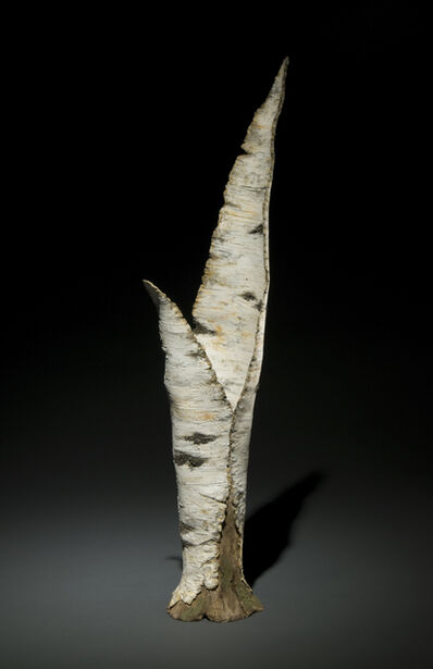Eric Serritella, 'Paper Birch Vase', nd