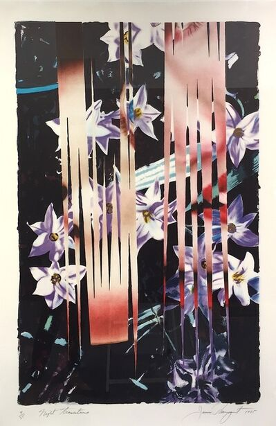 James Rosenquist, 'Night Transitions', 1885