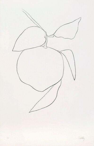 Ellsworth Kelly, 'Pamplemousse (Grapefruit)', 1964-1965