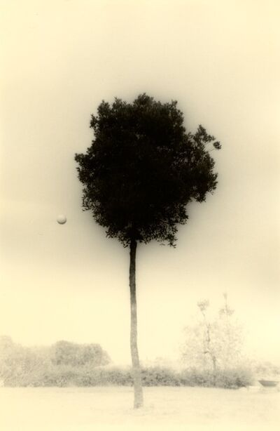 Yamamoto Masao, 'Untitled #1612(from Kawa=Flow)', 2012