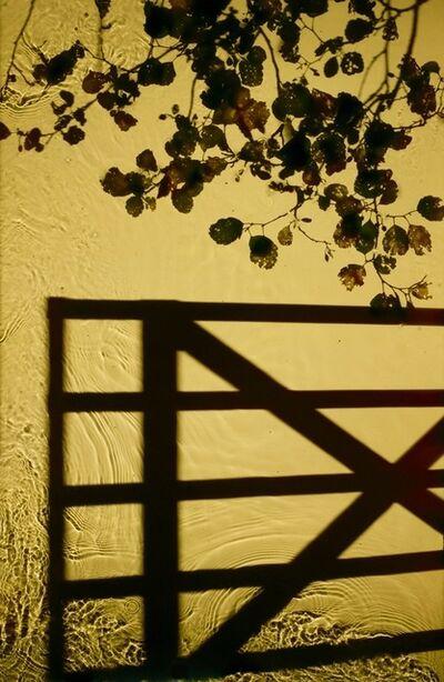 Susan Derges, 'Entrance', 2013