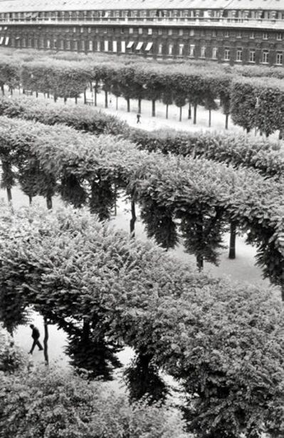 Henri Cartier-Bresson, 'Palais-Royal, Paris', 1960
