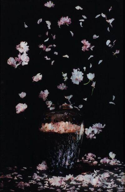 Titus Brein, 'Dutch Flower Bomb XVI '