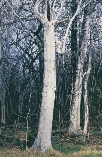 Garrett Middaugh, 'Hackberry Tree in Winter'