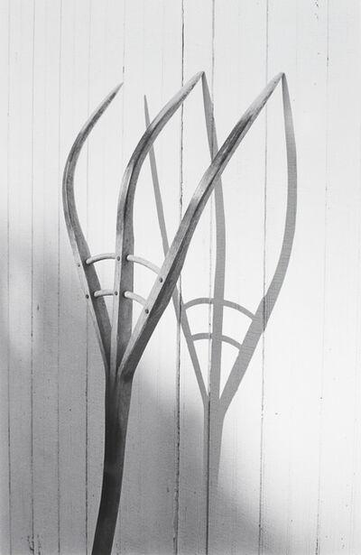 George Tice, 'Pitchfork, Amish Series', 1968