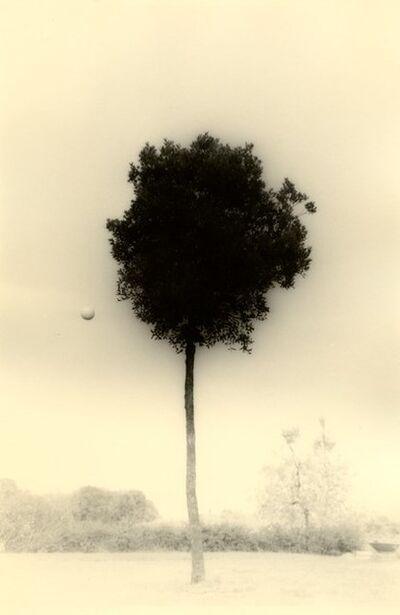 Yamamoto Masao, 'KAWA=FLOW #1612', 2010