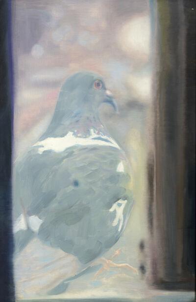 """Yigal Ozeri, 'Untitled """"Pigeon""""', 2004"""