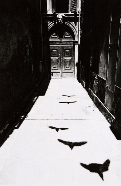 Ikkō Narahara, 'Bird's Shadow in Venice from Where Time has Stopped', 1964-printed in 1975