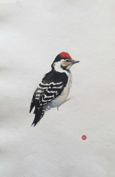 Karl Martens, 'Downy Woodpecker'