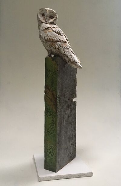 Christopher Reilly, 'Barn Owl'