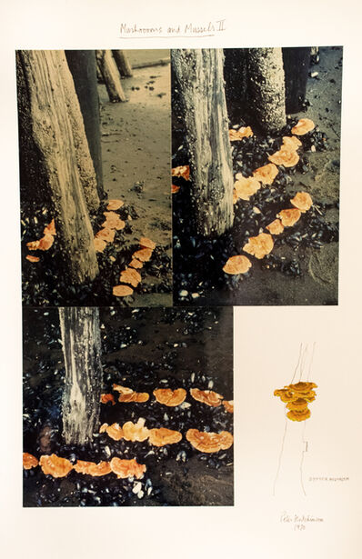 Peter Arthur Hutchinson, 'Mushrooms and Mussels II', 1970