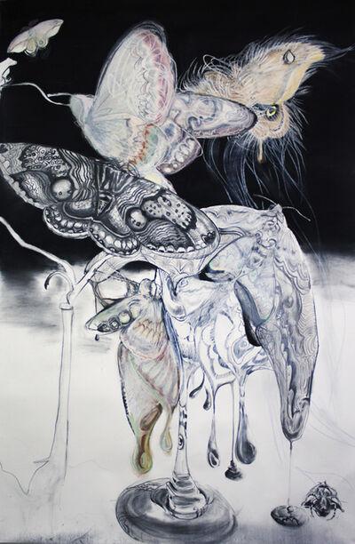 Sophie Steengracht, 'Nocturnal Pollination', 2019