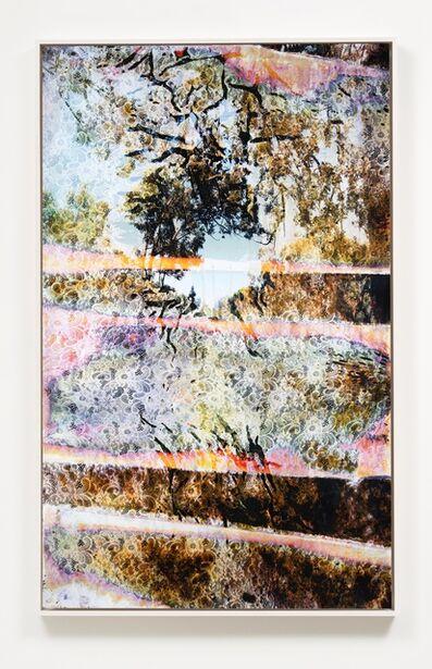 Matthew Brandt, 'Wai'anae 603627', 2016