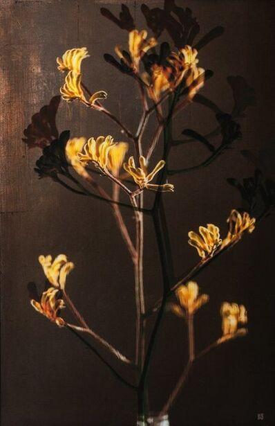 Titus Brein, 'Sol y Sombra '