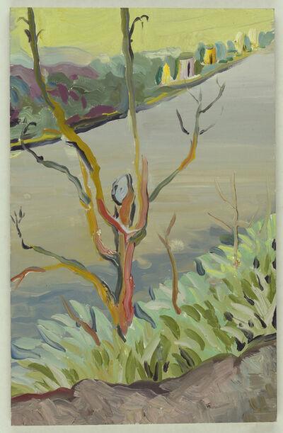 Melissa Brown, 'Hudson River', 2012