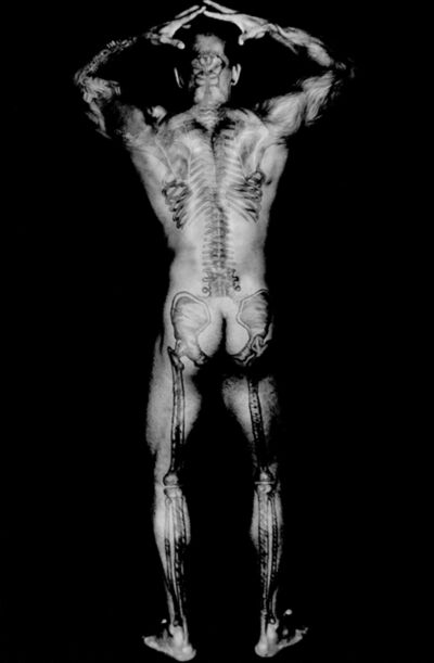 Dianora Niccolini, 'Ronaldo's Skeletal Tattoo Back', 2004