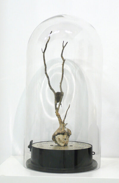 Charles P. Reay, 'Persistance of Memory', 2011