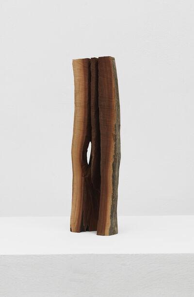 David Nash, 'Manzanita Slice', 2014