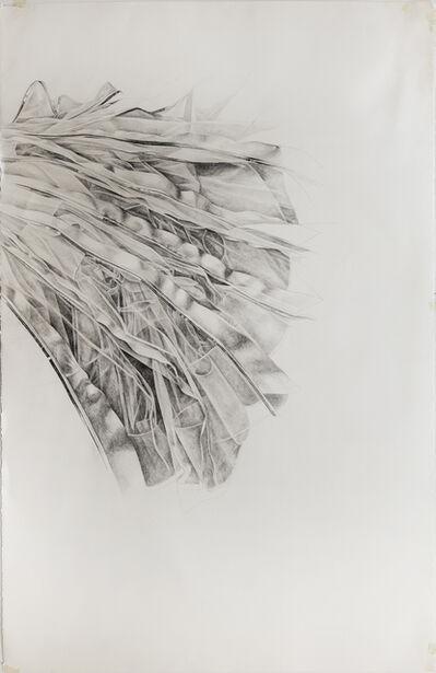 Stephanie Serpick, 'Drawing 8', 2011