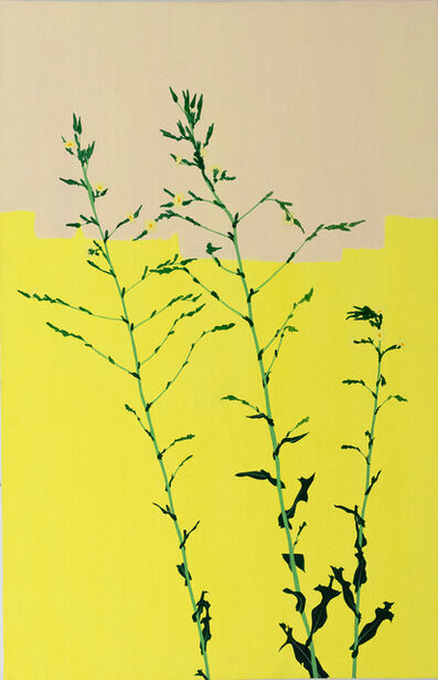 Hannah Cole, 'Life After a Hard Winter (Yellow on Yellow Weed)', 2017
