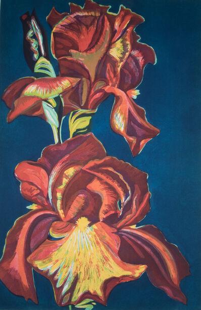 Lowell Nesbitt, 'Iris', 1974