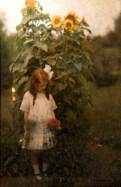 Arnold Genthe, 'Arnold Genthe, Girl and Sunflower - Autochrome in a Diascope', 1910-1920