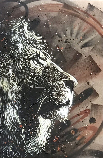 C215, 'Lion', 2018