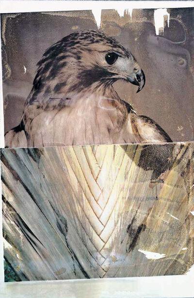 Robert Rauschenberg, 'Tribute 21: Nature', 1994