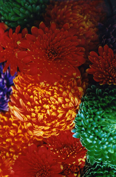 Mika Ninagawa, 'FLOWER ADDICT', 2009