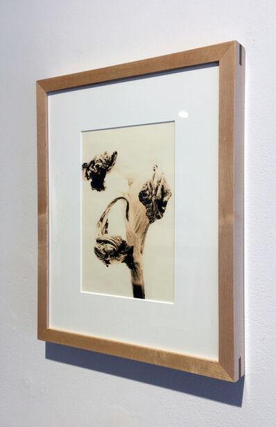 Mark Douglas, 'Flora 6 Lith, Framed', 2009