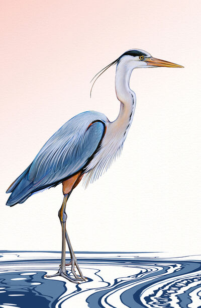 Ink Dwell (Jane Kim), 'Great Blue Heron', 2020