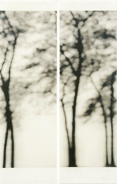 Jeri Eisenberg, 'Lakeshore, Chicago', 2006