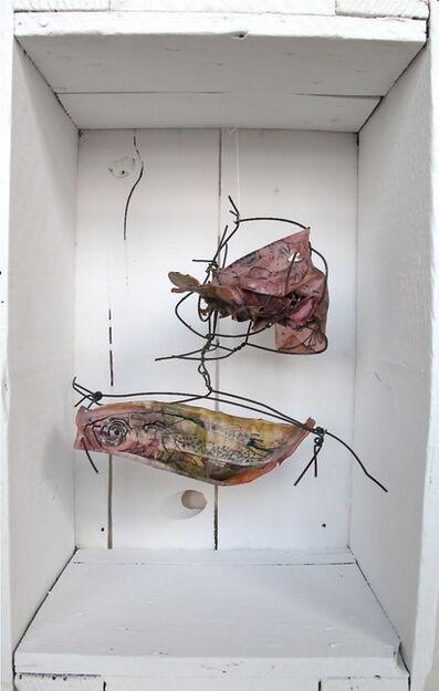 Julia Colavita, 'Fish Mutations (Plesiopidae)', 2013
