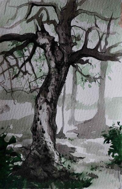 Deniz Defne Acerol, 'Olive Tree', 2016