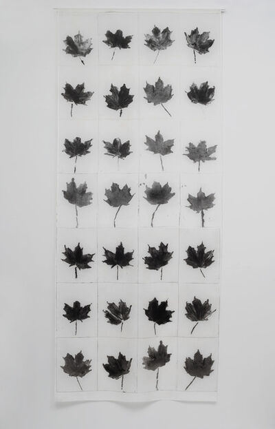 Nora Pauwels, 'Norway Maple', 2015