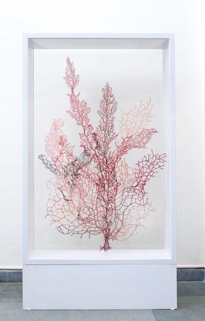 Sumakshi Singh, 'Red Coral', 2017