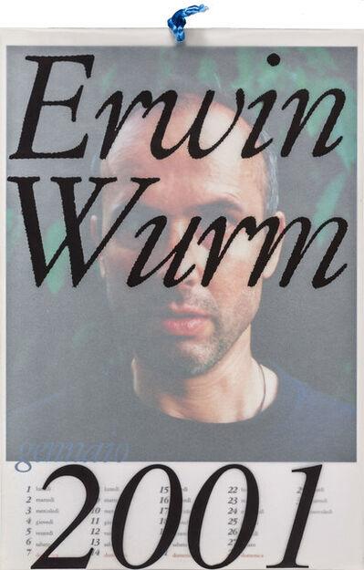 Erwin Wurm, 'Idiots 2001', 2000