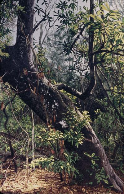 Garrett Middaugh, 'Wild Magnolia'