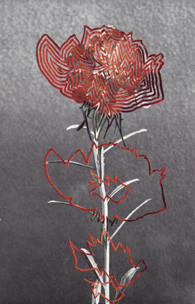 Alexis Anne Mackenzie, 'Not Quite Opera', 2014