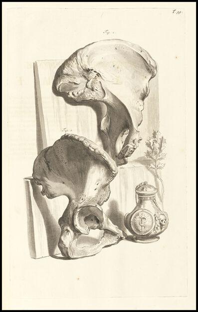 Gerard de Lairesse, 'Nonagesimaenonae tabulae', 1685