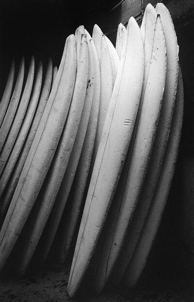Anthony Friedkin, 'Surfboard Blanks - Santa Monica Canyon, California', 1977
