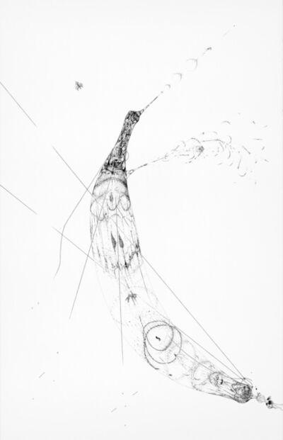 Ralf Ziervogel, 'Drawings for her pleasure II', 2011