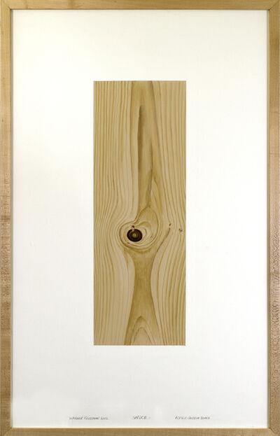 Warner Friedman, 'Spruce', 2012