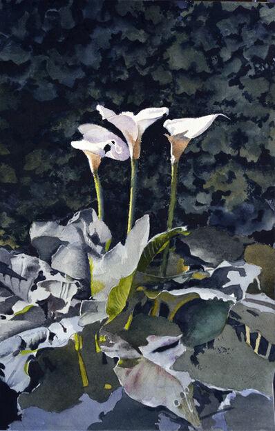 Óscar Tusquets Blanca, 'Tres lliris', 2017