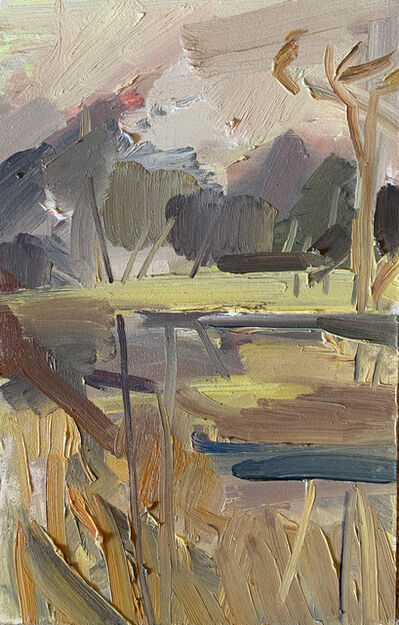Lindy Guinness, 'Wetland Between Sky and Water', 2019