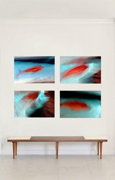 Luca Artioli, 'Red Fish Destruction Quadriptych', 2016