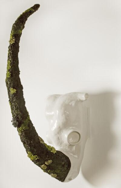 """Manuel Barbero, '""""Cráneo de Rinoceronte""""', 2015"""