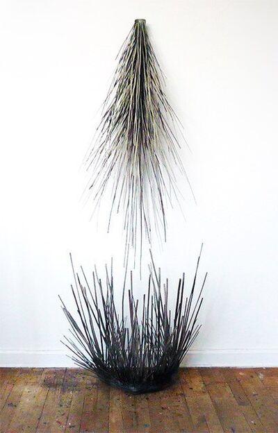 Barbara Korman, 'Wall/ Floor Branch', 2012