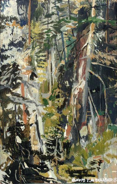 David Alexander, 'Silver Star Backyard', 2015